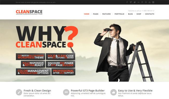 CleanSpace WordPress Theme