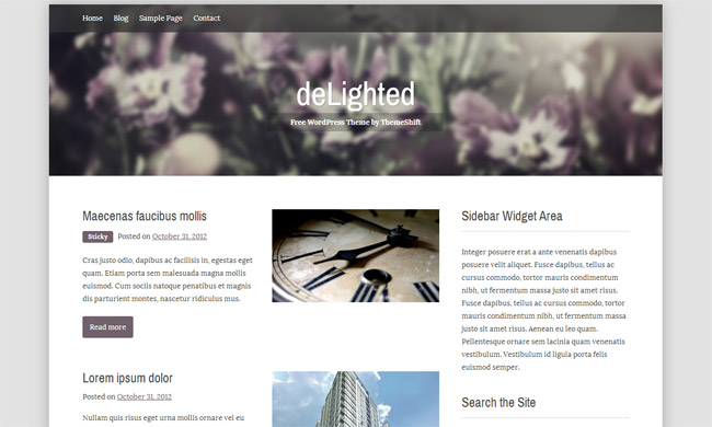 Delighted WordPress Theme