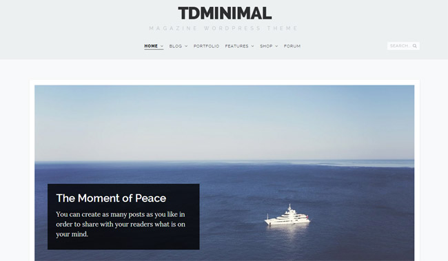 tdMinimal WordPress Theme