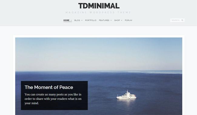 tdMinimal WordPress Theme