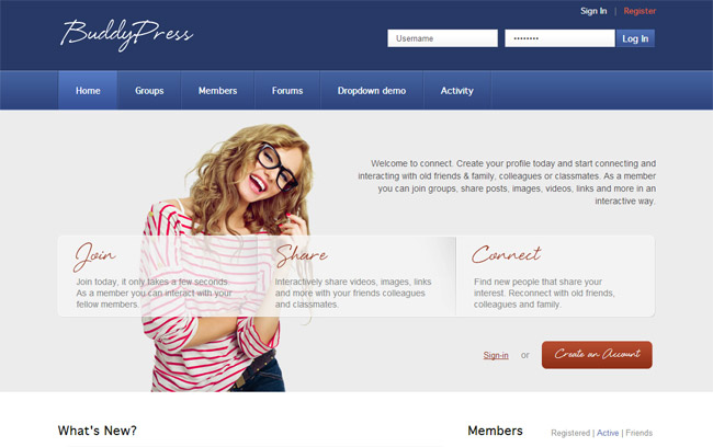 20+ Cool BuddyPress Themes for 2014 -