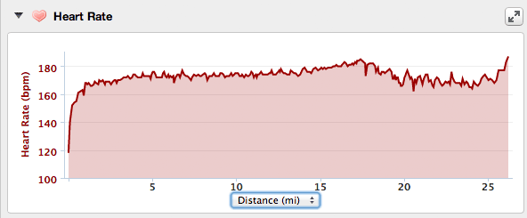 My Heart Rate During the Manchester Marathon