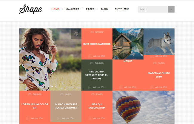 Shape WordPress Theme