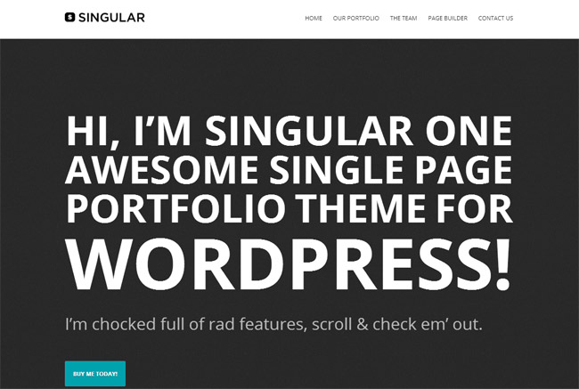 WP Singular WordPress Theme