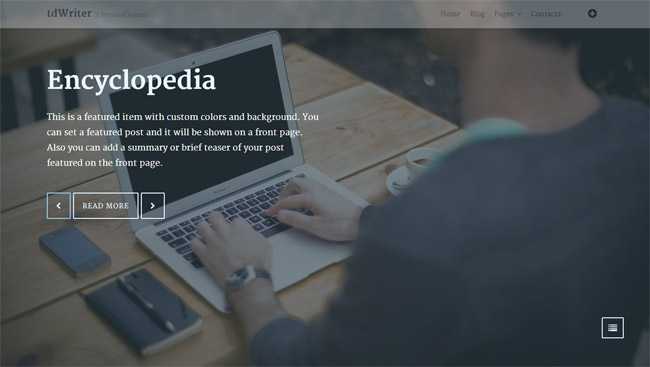 tdWriter WordPress Theme