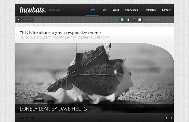 Intent WordPress Theme