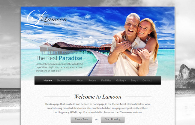 Lamoon WordPress Theme
