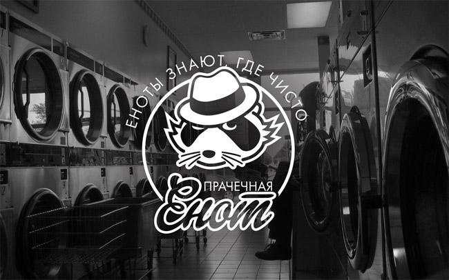 Raccoon Laundry Logo