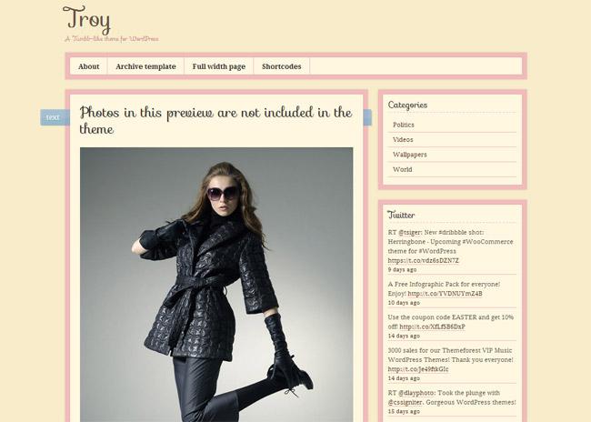 Troy WordPress Theme