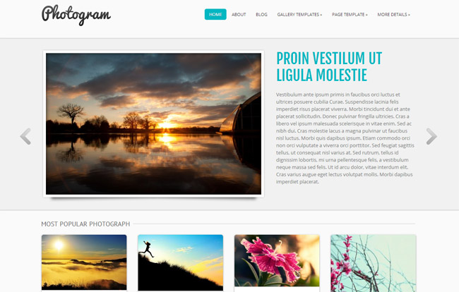 Photogram Free WordPress Theme