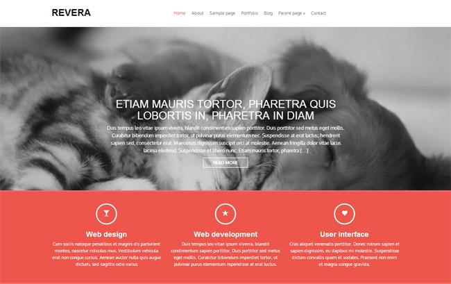 Revera Free WordPress Theme