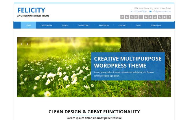 Felicity Free WordPress Theme
