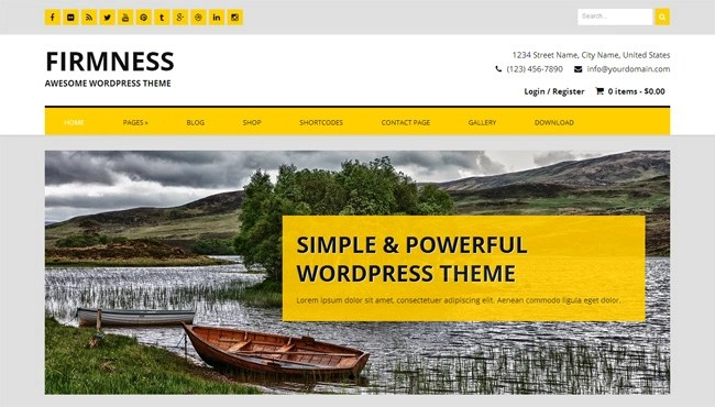 Firmness Free WordPress Theme
