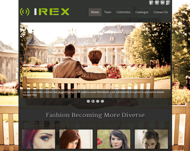 Irex Free WordPress Theme