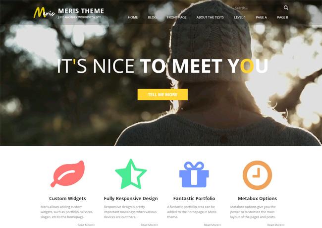 Meris Free WordPress Theme