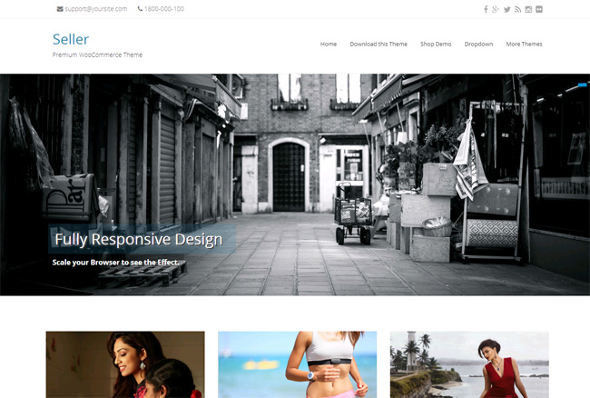 Seller Free WordPress Theme