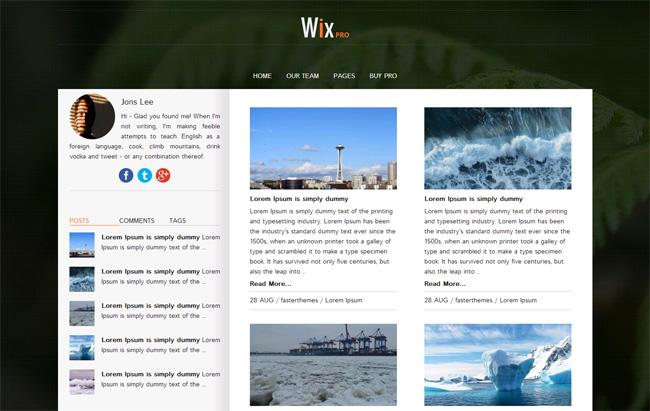 Wix Pro Free WordPress Theme