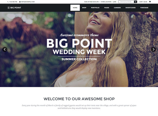 Big Point WordPress Theme