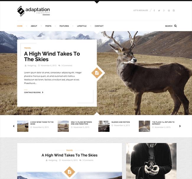 Adaptation WordPress Theme
