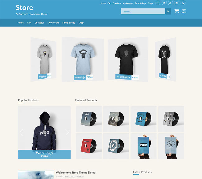 Store eCommerce WordPress Themes