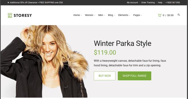 Storesy WordPress Theme