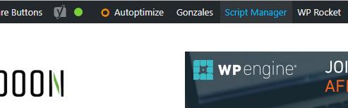 Script Manager Link