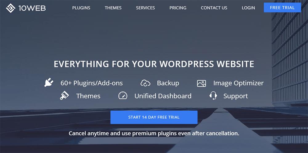 10Web WordPress Services