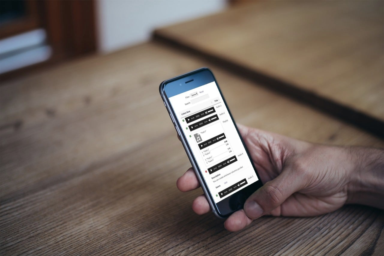 Screenshot of a WordPress audio library plugin