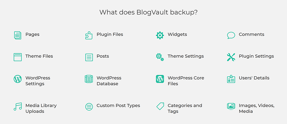 What BlogVault Backs Up