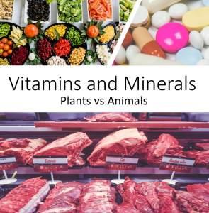 Vitamins and Minerals - Plants vs Animals