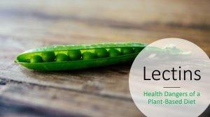 health dangers of lectins