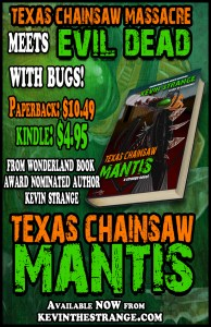 texaschainsawbanner02