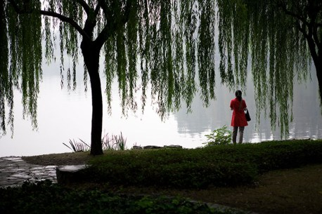 Along the Su Causeway over the West Lake in Hangzhou.