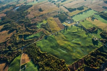 Rippling fields in harvest lushness