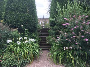 Hedge steps Renishaw gardens