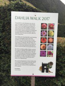 Biddulph Grange Dahlia walk noticeboard