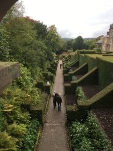 Biddulph Grange dahlia walk viewed from tower