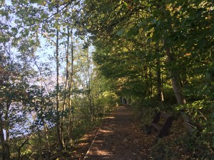 Damflask path