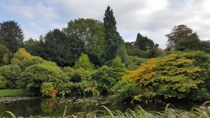 Biddulph Grange lake autumn