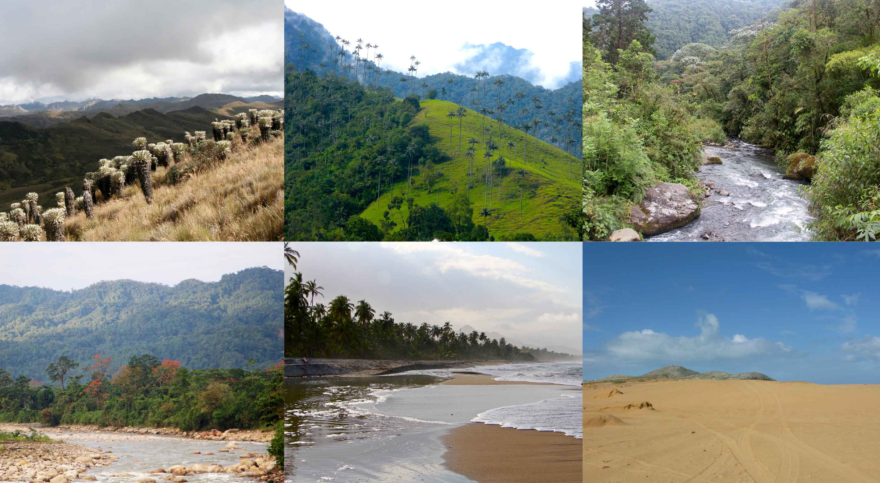 Colombia Megadiverse And Still To Be Discovered