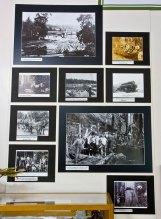 Key Peninsula Historical Society & Museum Cackleberries Humbleberries & Hooch Exhibit, Logging memorabilia