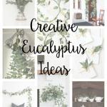 Creative Eucalyptus Ideas