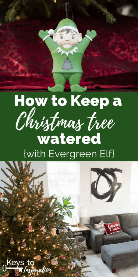 how to keep a christmas tree watered with evergreen elf