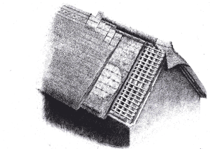 Thatching and the thatching industry