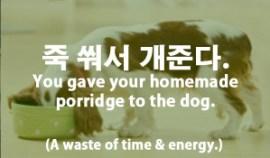 22-dog-porridge