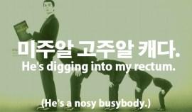 55-nosy-busybody