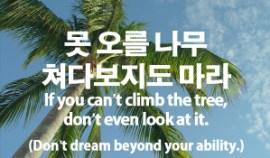 93-tree-climbing