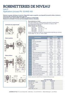 thumbnail of KLINGER INDICATEURS DE NIVEAU-fiche technique-application process robinet 20