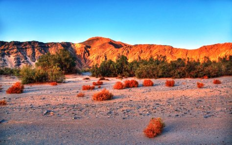 Ausflug in den Nationalpark Wadi El Gemal ab Marsa Alam (2)