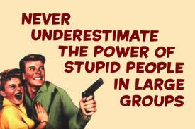 never_underestimate_stupid